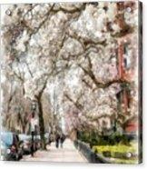 Springtime Boston Back Bay Acrylic Print