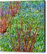 Springtime Impression Acrylic Print