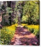 Springtime In Astroni National Park In Italy Acrylic Print