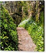 Springtime In Dorset Acrylic Print