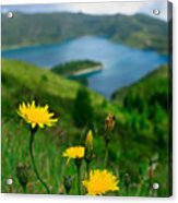Springtime In Fogo Crater Acrylic Print
