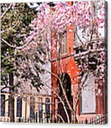 Springtime In Lincoln Park Acrylic Print