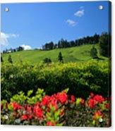 Springtime Landscape Acrylic Print