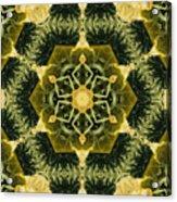 Springtime  Mandala Acrylic Print
