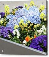 Springtime Planter Acrylic Print