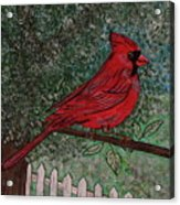 Springtime Red Cardinal Acrylic Print