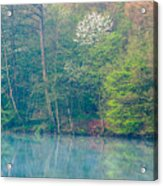 Springtime Reflection Acrylic Print