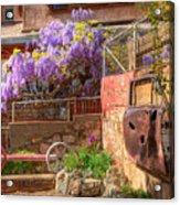 Springtime Wisteria In Old Bisbee Acrylic Print