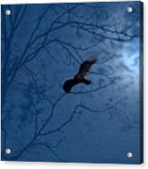 Sprit In The Sky Acrylic Print