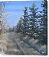 Spruce Trees Along A Snowy Road  Acrylic Print