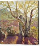 Spur Cross, April Acrylic Print