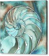Square Nautilus Acrylic Print