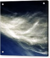 Squid Cloud Acrylic Print