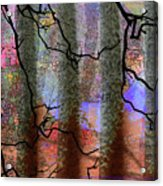 Squiggles And Lines Acrylic Print
