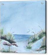 Ssi Beach Acrylic Print