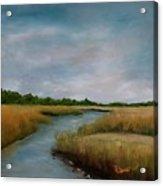 Ssi Marsh Acrylic Print