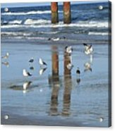 St. Augustine Beach Acrylic Print
