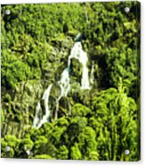 St Columba Falls Tasmania Acrylic Print