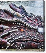 St Davids Day Dragon Acrylic Print