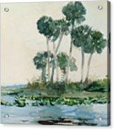 St John's River Florida Acrylic Print