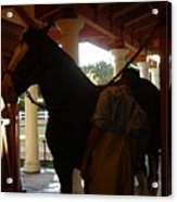 Stable Groom - 2 Acrylic Print