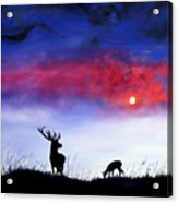 Stag And Deer In Moonlight Acrylic Print