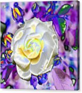 Stained Glass Beauty Acrylic Print