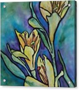 Stained Glass Flowers Acrylic Print