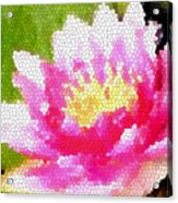 Stained Glass Waterlily Acrylic Print