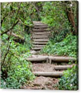 Stairs Going Up Hillside Acrylic Print