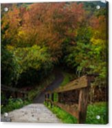 Stairs To The Graveyard Acrylic Print