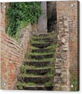 Stairway Less Traveled Acrylic Print