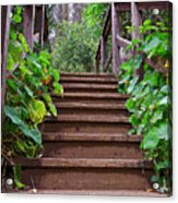 Stairway To Beauty Acrylic Print
