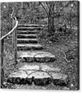 Stairway To Nature Acrylic Print