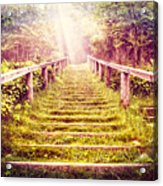 Stairway To The Garden Acrylic Print