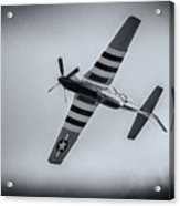 Stallion 51 - P-51d Mustang - Crazy Horse 2 Acrylic Print