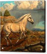 Stallion's Overlook Acrylic Print