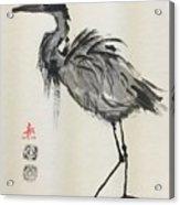 Standing Heron Acrylic Print