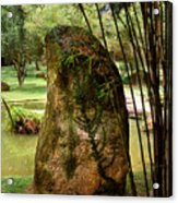 Standing Stone With Fern And Bamboo 19a Acrylic Print by Gerry Gantt