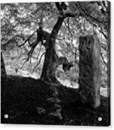 Standing Stones Near The Tree Acrylic Print