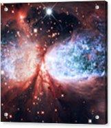 Star Gazer Acrylic Print