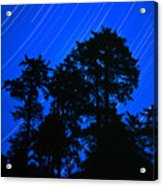 Star Trails Behind Ruby Beach Tree Group Acrylic Print