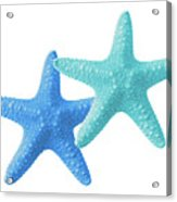 Starfish Blue And Turquoise On White Acrylic Print