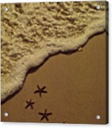 Starfish Constellation Acrylic Print