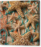 Starfish In Net Acrylic Print by Garry Gay