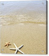 Starfish On Beach Acrylic Print