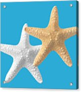 Starfish On Turquoise Acrylic Print