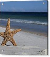 Starfish Standing On The Beach Acrylic Print