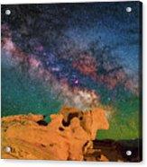 Stargazing Bull Acrylic Print