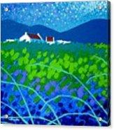 Starry Night In Wicklow Acrylic Print by John  Nolan